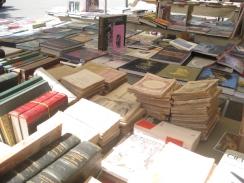 Mostra del Libro, Torrita di Siena